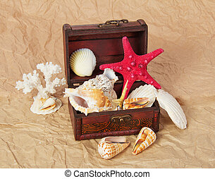 Sea shells, cockleshells, starfishes in chest - Sea shells,...
