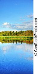 Vertical panorama of wetland