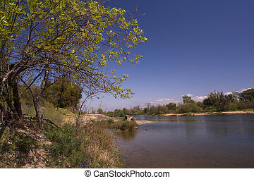 Spring Day on American River - a Spring Day on American...