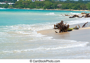 Beach at Playa Blanca - Deserted untouched tropical beach on...
