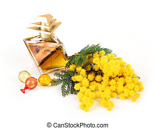 Perfume of mimosa flowers on white background