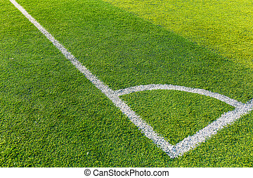 Football court grass