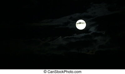 full moon - Black clouds on the background of the full moon....