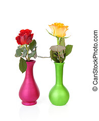 Colorful roses in vases over white background
