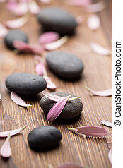 Treatment spa - Spa stones with flower petals Relaxing...