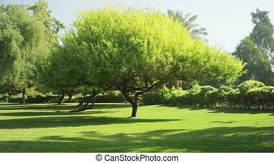 Landscaped Park - Landscaped Formal Garden Park