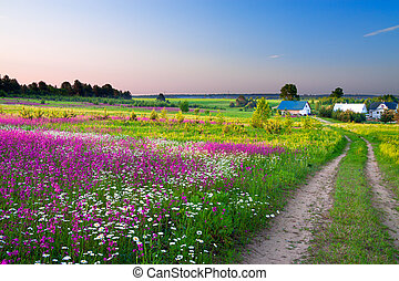 landscape with a blossoming meadow, the road and a farm -...