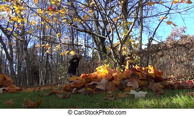 leaves pile female worker - Closeup of autumn tree leaves...