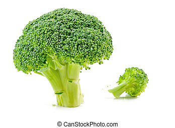 raw broccoli isolated - fresh raw broccoli isolated on white...