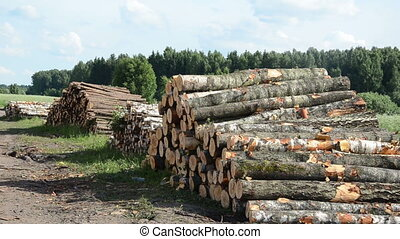 wood fuel logs stack - sustainable organic wood fuel stacks...
