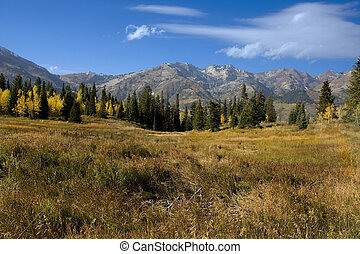 Rocky Mountains - High Mountain Flat in the fall showing all...