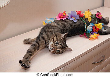 Tabby is a coiled flower garland and stretched at full...