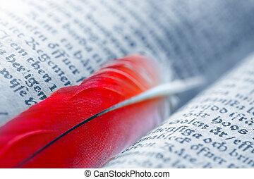 viejo, mensaje, libro, pluma