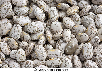 pinto or mottled beans - background of pinto beans with...