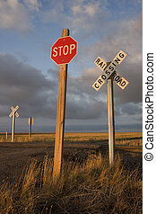 rural railroad crossing witrh a stop sign - Rural single...