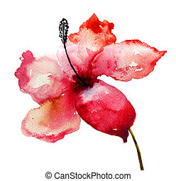 Beautiful Lily flower, watercolor illustration