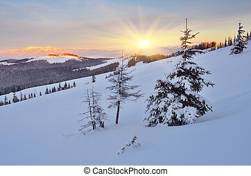 Winter in the mountains - Beautiful winter evening with a...