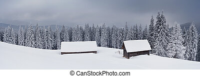 Panorama of winter landscape - Landscape panorama of a...