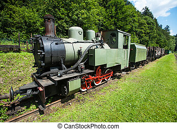Narrow-gauge railway, steam train in Cisna, Poland
