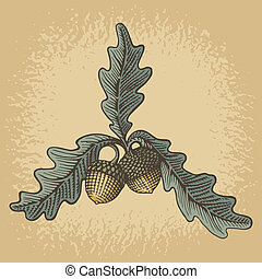 Acorn woodcut - Hand drawn acorns and oak leaves with...