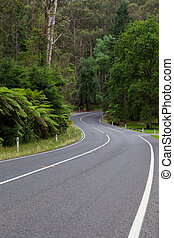 The Black Spur - A road winds thru the Black Spur near...
