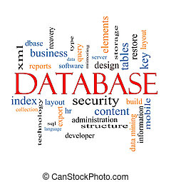 Database Word Cloud Concept with great terms such as...