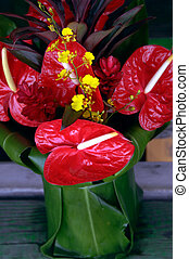 Five Dollar Floral Bargain - At the Hilo Farmer's Market on...