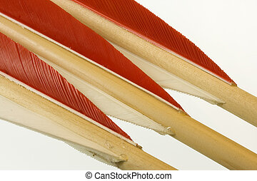 fletches of three bow arrows - red and white fletches of...