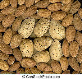 almonds, shelled and unshelled, macro