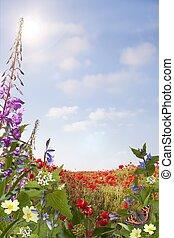 Summer Background Portrait - Wild flower background with...