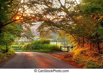 Wooded English country lane at sunset - The sun setting at...