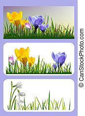 Set of banners with spring flowers and grass. - Colorful...
