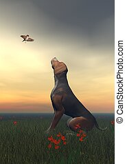 Black tan dog and butterfly - 3D render - Black tan dog...