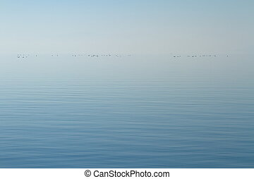 Quiet lake - Horizon of quiet lake with little ducks by...