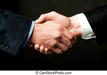 Business people shaking hands - Business handshake after...
