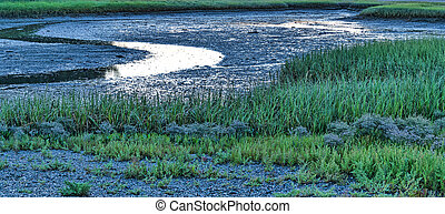 Low tide in the early morning - View of marsh land at low...