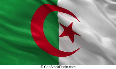 Flag of Algeria seamless loop - Flag of Algeria waving in...