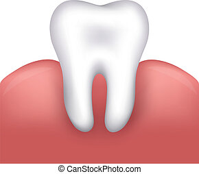 Beautiful healthy tooth and gums Dental illustration