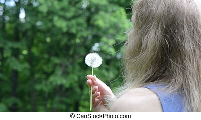 woman blow sowthistle - Woman hand hold and blow deflorated...