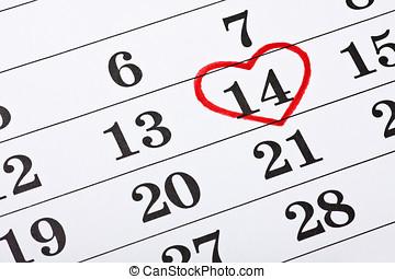 herz, februar,  14, valentines, Kalender, kreiste ein, datum, Tag, rotes