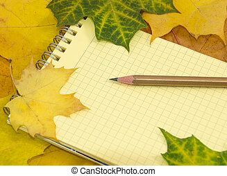 Copybook and pencil on coloured map - Copybook with yellow...