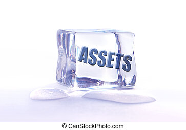 Frozen assets - The word assets frozen inside an ice cube