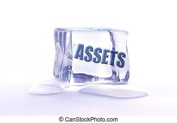 Frozen assets  - The word assets frozen inside an ice cube