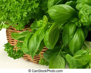 Wicker of herbs, closeup, isolated - Wicker with basil and...