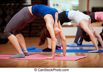 Doing some yoga at the gym - Group of young women arching...