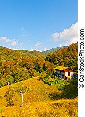 Farmhouse - The Farmhouse High Up in the Italian Alps