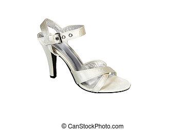 Shoe in silver