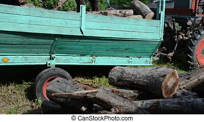 man unload wood trailer - workers unload tree wood logs for...