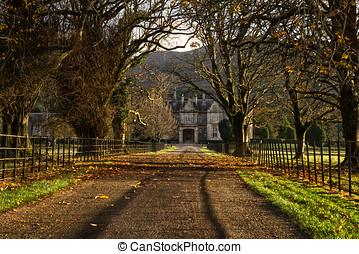 Muckross House Alley At Sunset,Killarney National...