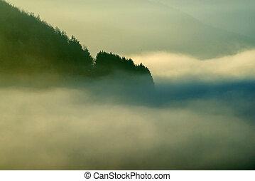 landscape in high fog